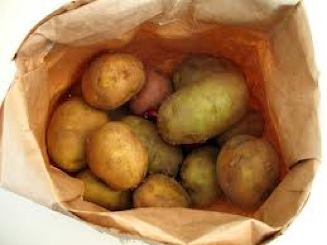 تحذير من مادة السولانين في حبات البطاطس!