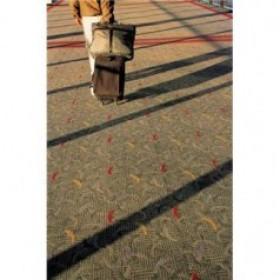 السفر ليس طرقات وجدران .. إنه معرفة وثقافة …
