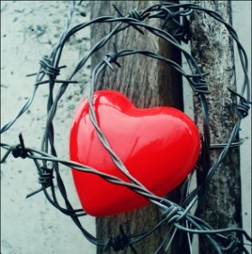 … قلبي ميشبهنيش …